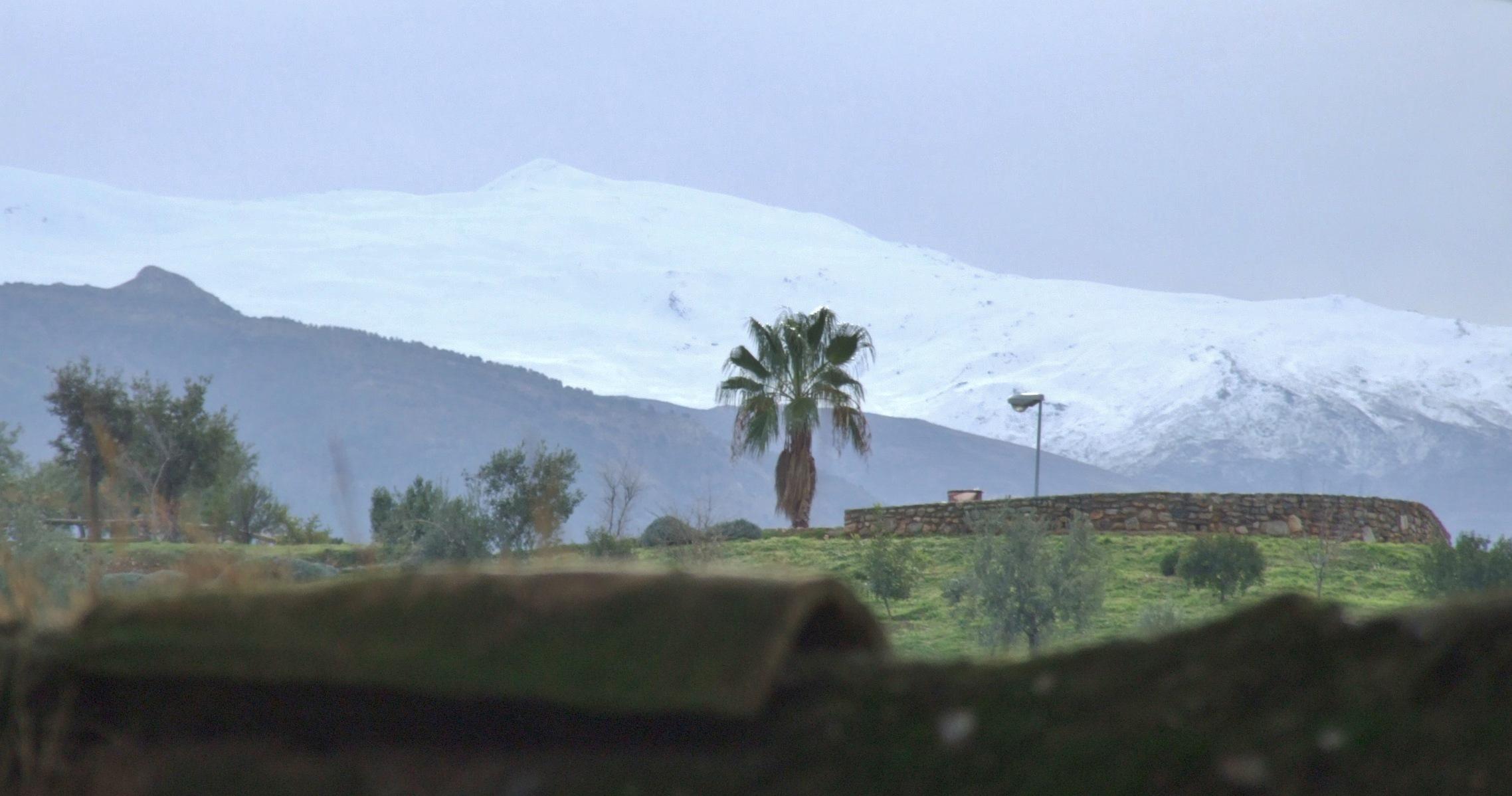 Granada 2010