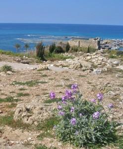 Libanon 2006, Byblos, hrad v přístavu