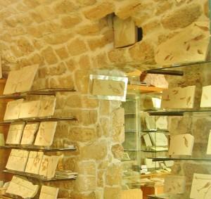 Libanon 2006 - Byblos, obchod se zkamenělinami u přístavu