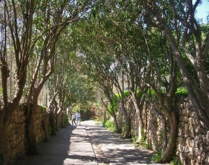 Libanon 2006,  Byblos, cesta od archeol. areálu do přístavu